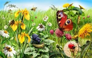 Soggiorno-decorazione-della-parete-di-casa-poster-di-stoffa-Natura-Paesaggio-Estate-Insetti